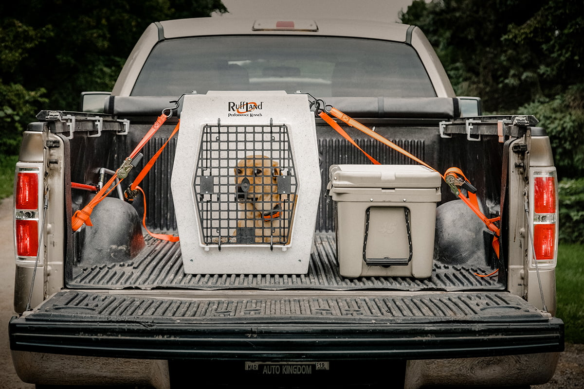 How to Tie Down Dog Crate in Car